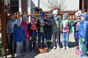 Szukanie jajek (grupa V)